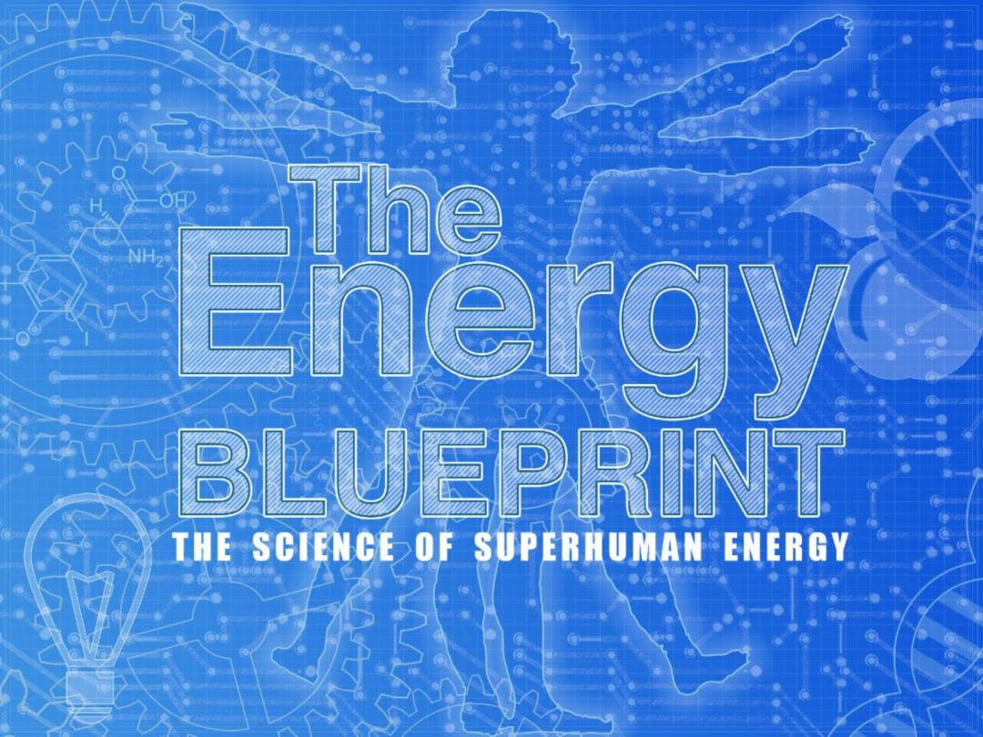 Excuse proof fitness the energy blueprint malvernweather Images